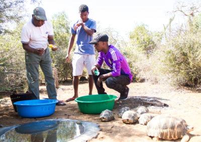 Centre de réhabilitation de la faune à Mangily